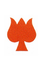 Farina´s red tulip sign (001551986)
