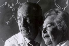 Dr. George H. Hitchings und Gertrude Elion, 1988
